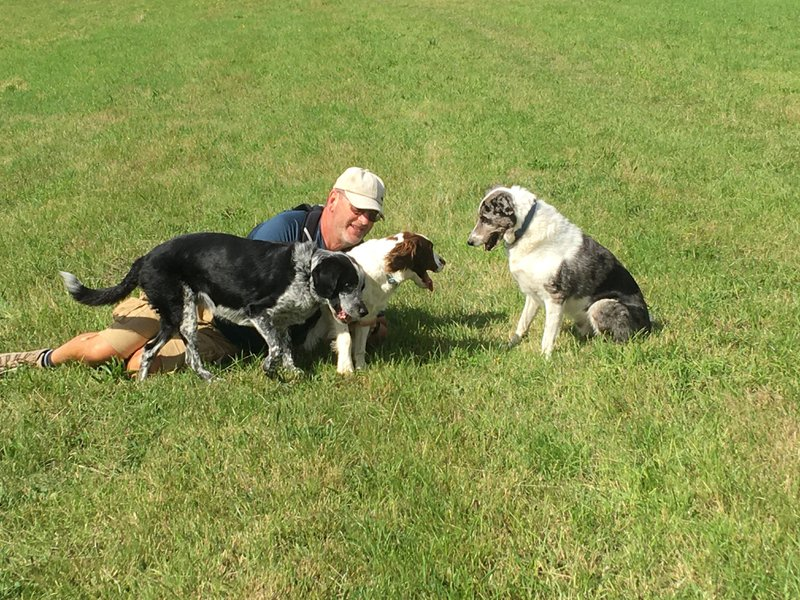 Rogers love of his time with Dogs