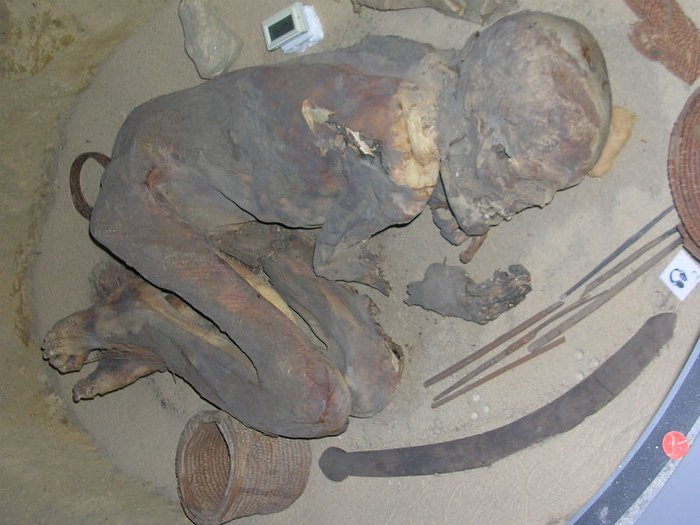 ancient egyptian mummy
