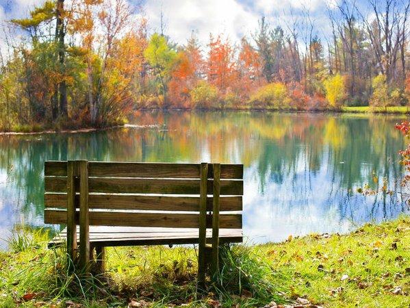How to dedicate a memorial bench