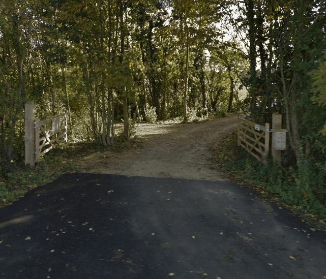 Longholt Wood