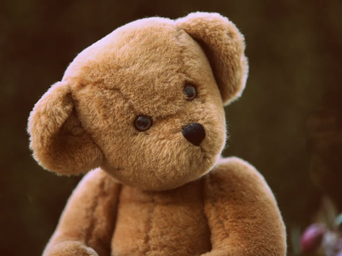child funeral poems - picture shows a teddy bear