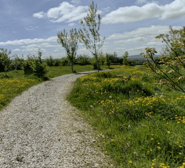 Crossways Woodland Burials