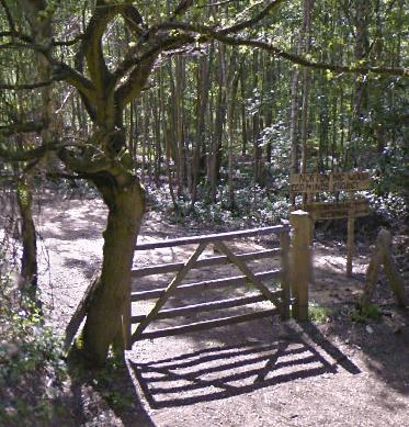 Norton Disney Big Wood Natural Burial Ground