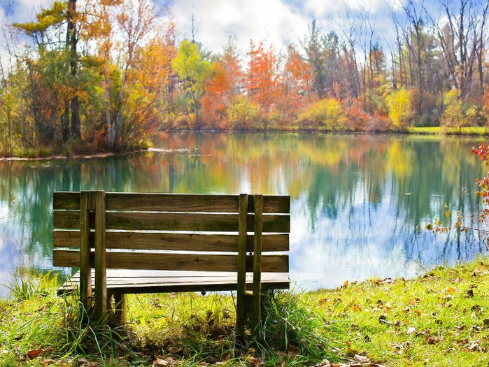 Memorial Benches How To Organise A Memorial Bench Funeral Guide