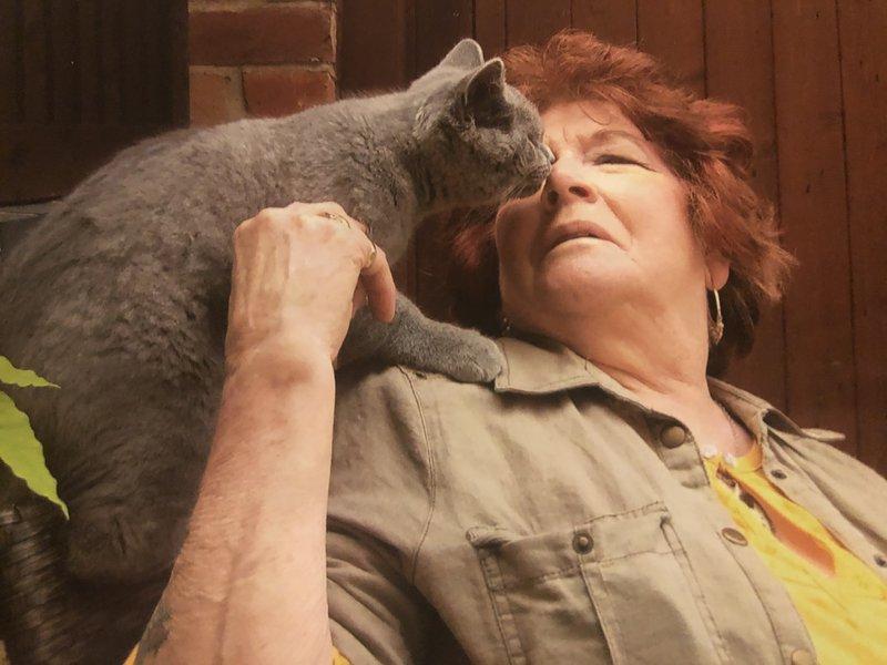 Nanny Cats