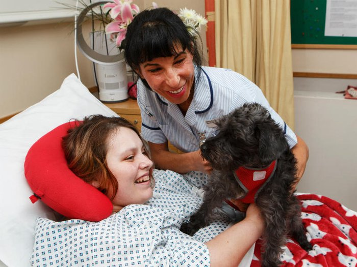 Patient enjoying animal therapy in a hospice