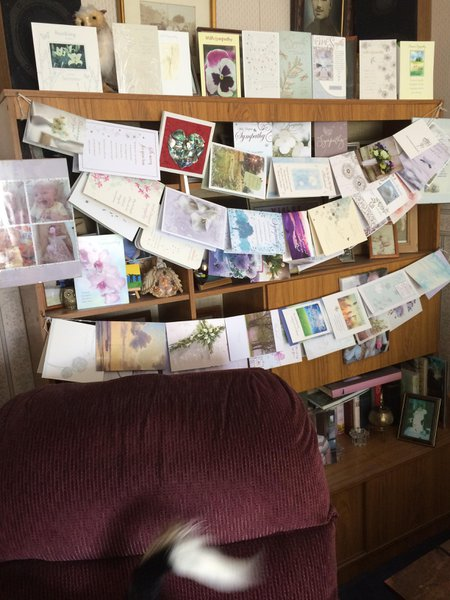 this is all the cards of condolence from all of you we would have done them one by one but as you can see there is so many the family would like to say thank you's to all that have sent
