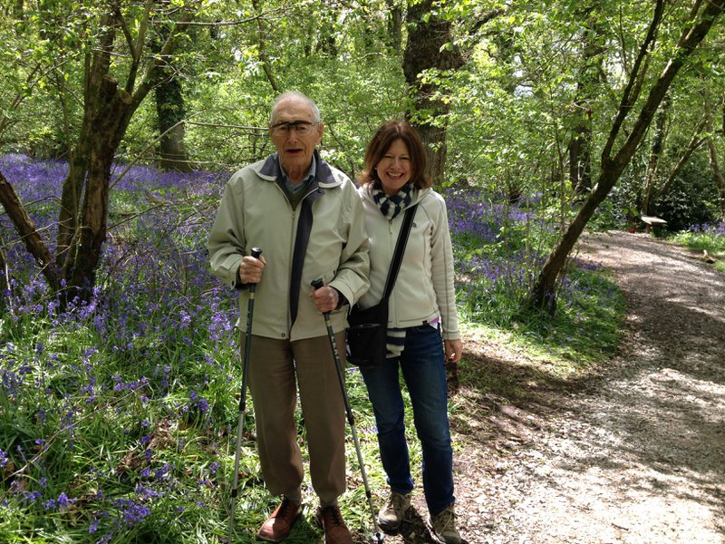 A favourite walk in Bluebell wood, Pamphill