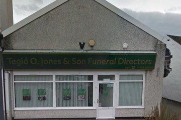Tegid O.Jones & Son