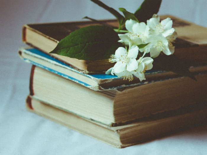 apple blossom on a stack of books
