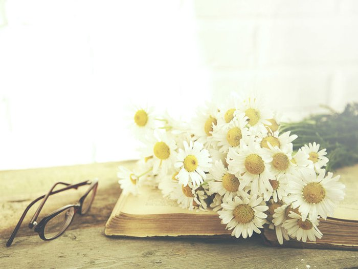 An open book with flowers on top and a pair of spectacles beside them
