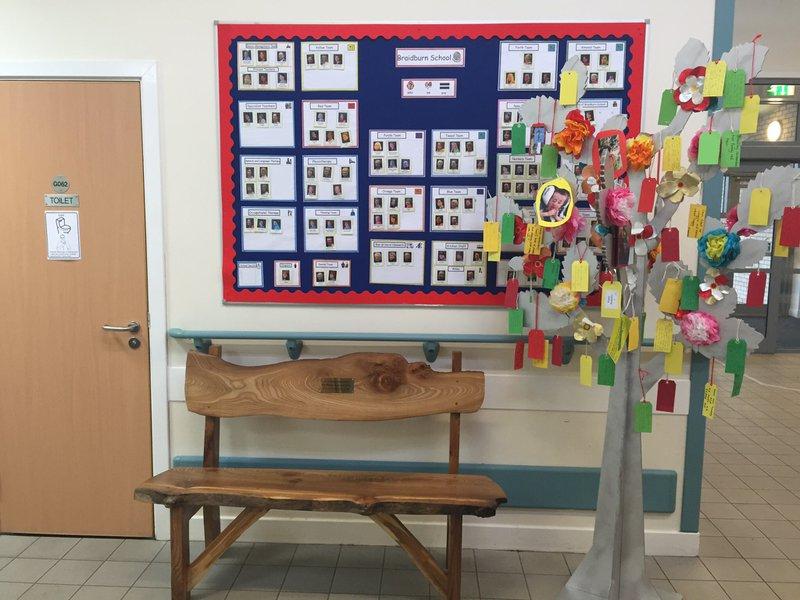 The Merry Bench and Memory Tree at Braidburn School.