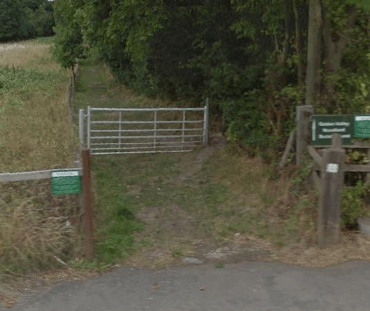 Golden Valley Woodland Burial Ground