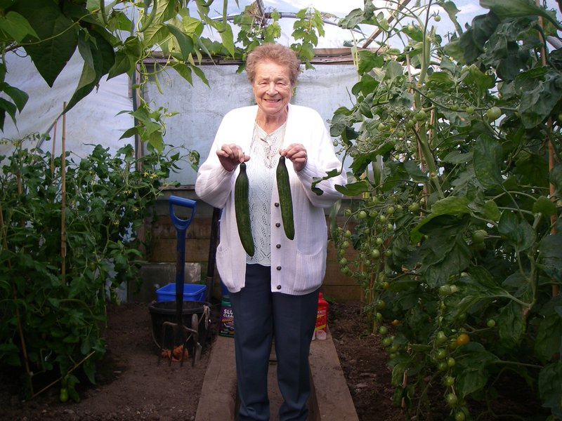 Picking fresh cumbers for dinner at her Daughters