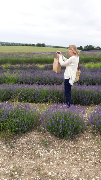 Always taking photos of each other taking photos. Hitchin Lavender Fields my birthday, 22 June 2017.