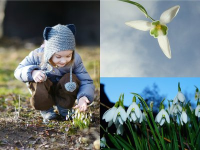 Join a snowdrop walk in memory of someone you loved