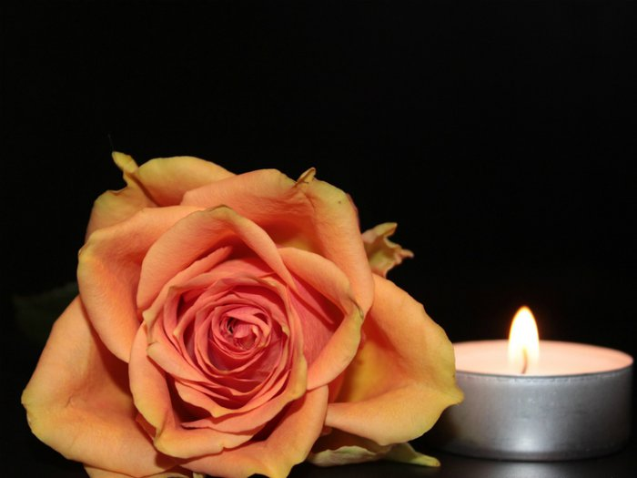 Memorial rose and lit candle