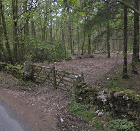 Dalton Woodland Burial Ground