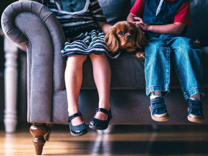 Two children pet a therapy dog at a funeral home to help them cope with bereavement