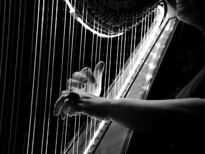 Musician playing the harp