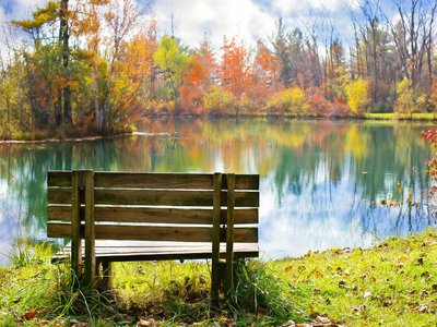 How to dedicate a memorial bench