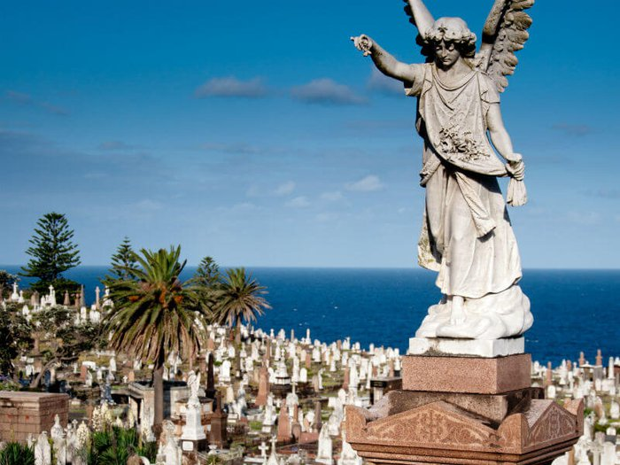 Stunning ocean views from Waverley Cemetery, Australia